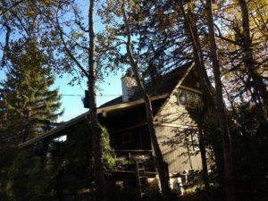 Old ceder roof6