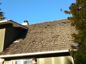 Old ceder roof8
