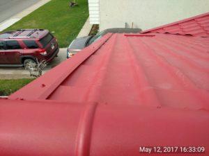 Amazing roof 8
