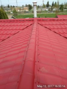 Amazing roof 5